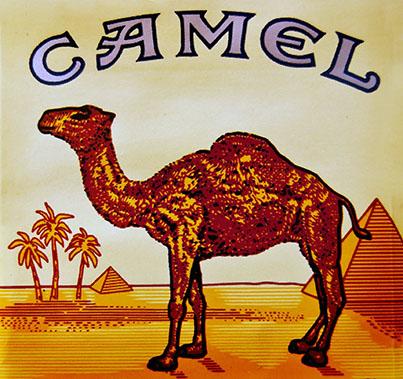 camellogo